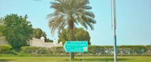 Norfolk, Dubai, England, Mexico 611 (2)